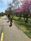 Erste groß Fahrradtouren mit der ganzen Familie.